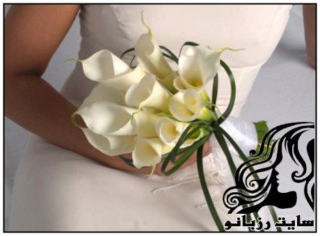 http://up.rozbano.com/view/1561744/rzbano-08-6.jpg