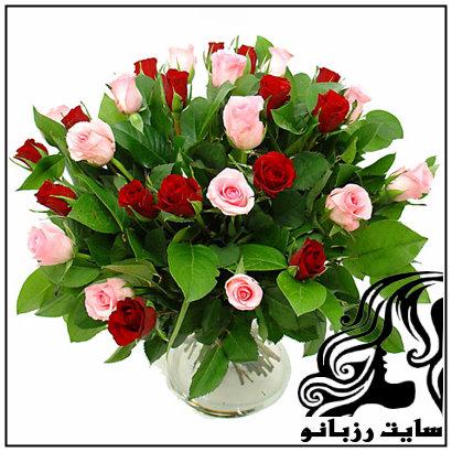 روش های نگهداری گل در گلدان در مدت زمان طولانی
