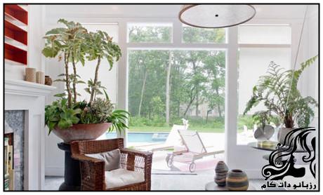 ترفندهایی برای مراقبت از گیاهان آپارتمانی