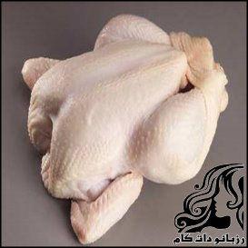 ترفندهای تشخیص مرغ سالم
