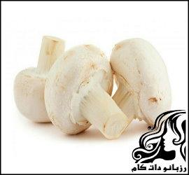 طرز تهیه انواع غذا با قارچ