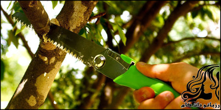 http://up.rozbano.com/view/2319937/rozbano-307-5.jpg