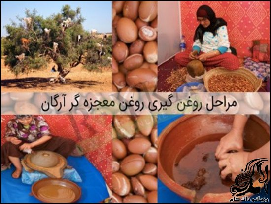 http://up.rozbano.com/view/2694906/Argan-1.jpg