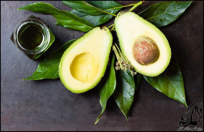 http://up.rozbano.com/view/2705787/avocado-03.jpg