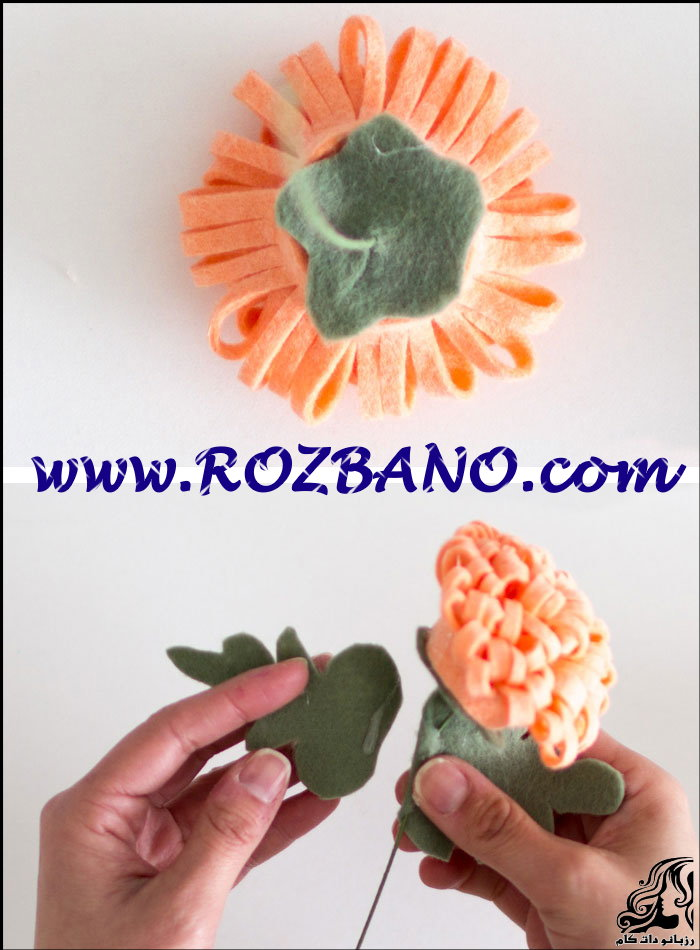http://up.rozbano.com/view/2789949/Chrysanthemum-05.jpg