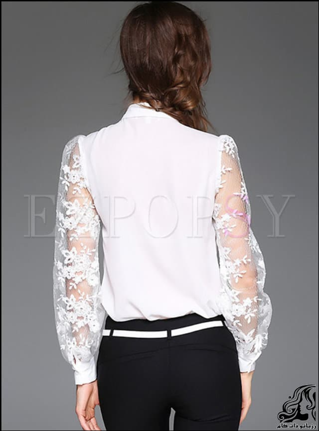 http://up.rozbano.com/view/3086398/Mesh%20Lace%20Embroidery%20Tied%20collar%20Blouse.jpg