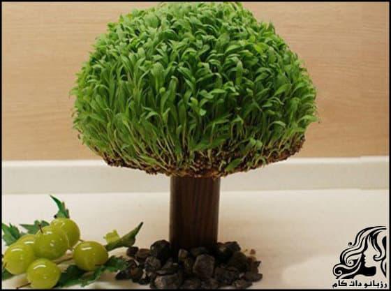 https://up.rozbano.com/view/3312176/Planting%20green%20trees.jpg