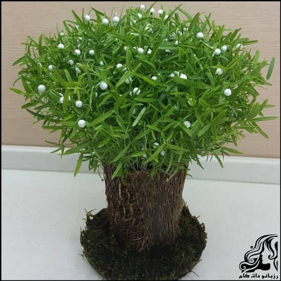 https://up.rozbano.com/view/3312177/Planting%20green%20trees-01.jpg