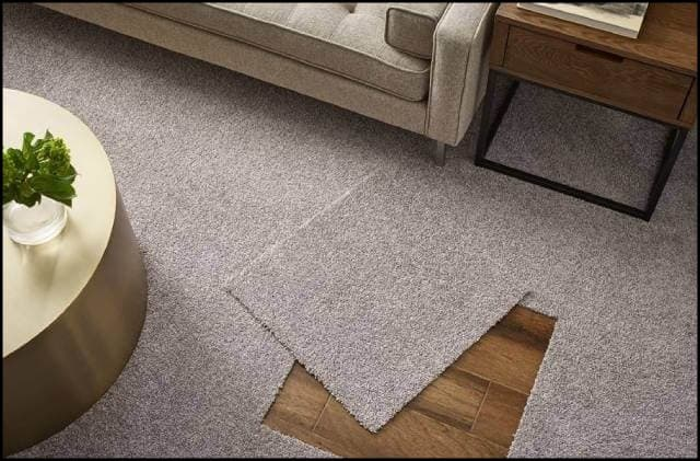 https://up.rozbano.com/view/3369195/Familiarity%20with%20foreign%20carpet-02.jpg