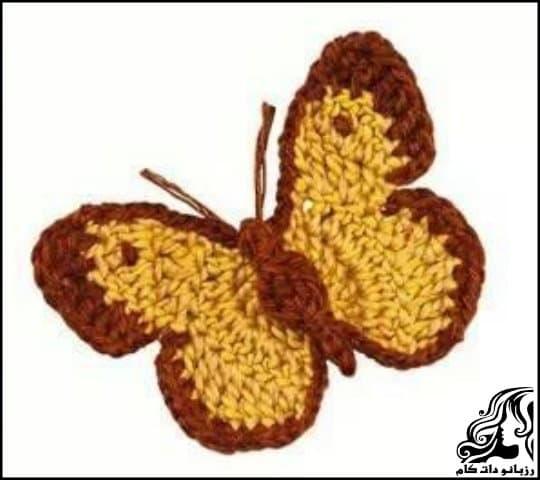 https://up.rozbano.com/view/3416965/Butterfly%20weaving%20training.jpg